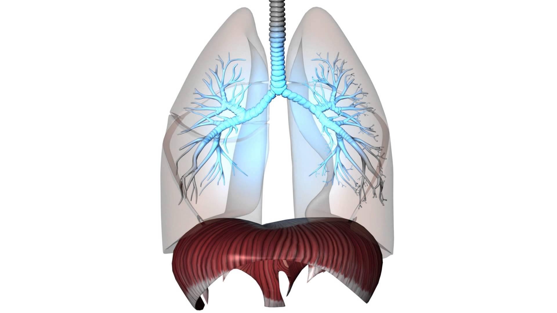 problem atmung geburt